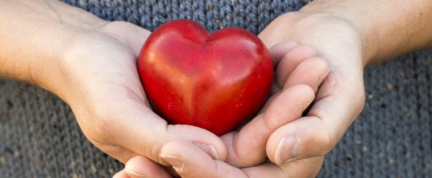 Två händer som håller ett rött hjärta i plast.