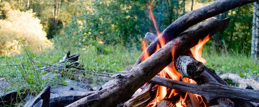 En brasa i skogen