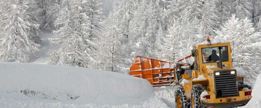 Snöplog plogar vid en skogsväg
