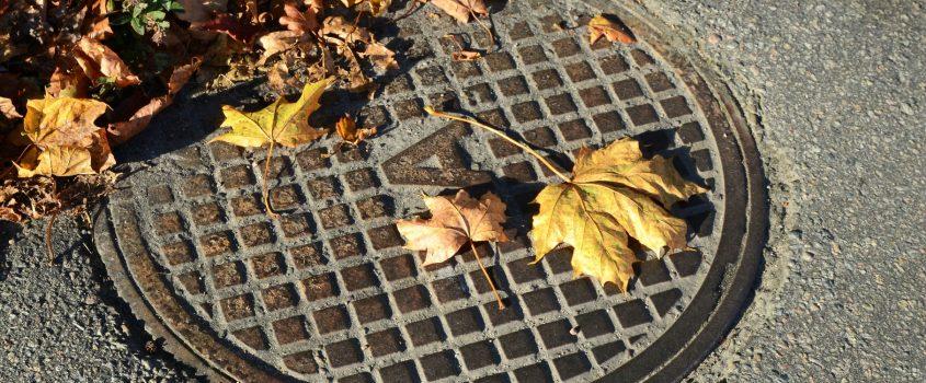 Avloppsbrunn i asfalterad gata där höstlöv har samlats