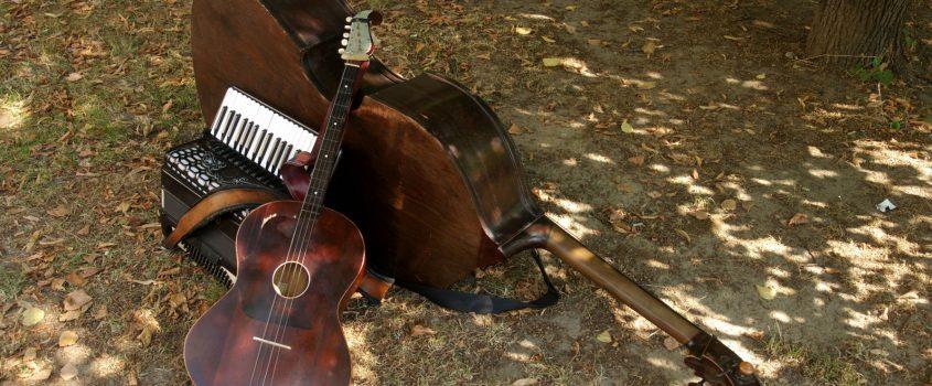 Instrument ligger på löv