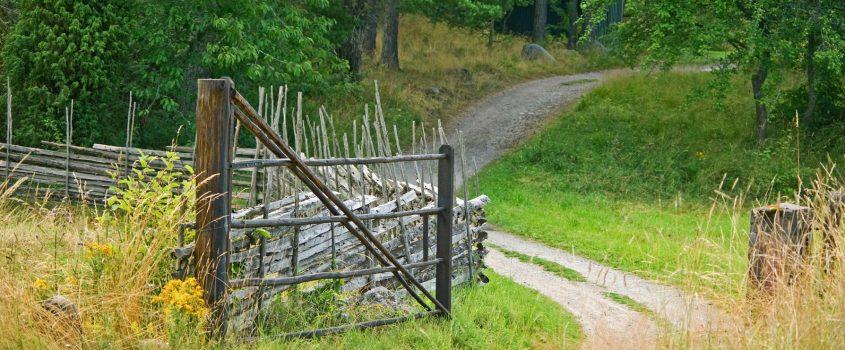 Väg och grind ute på landsbygden