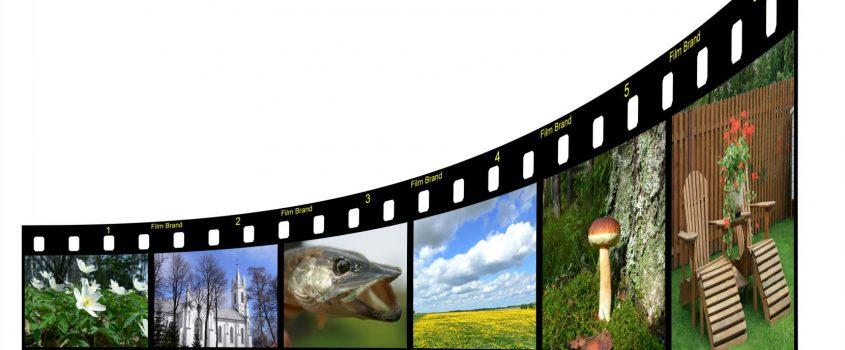 Filmrutor med naturbilder
