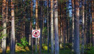 Trädstammar i början av skog med skylt för eldningsförbud