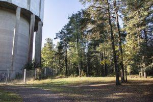 Nybbleskogen invid vattentornet