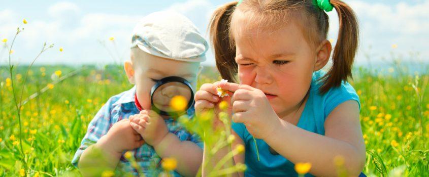 Barn som leker i en sommaräng